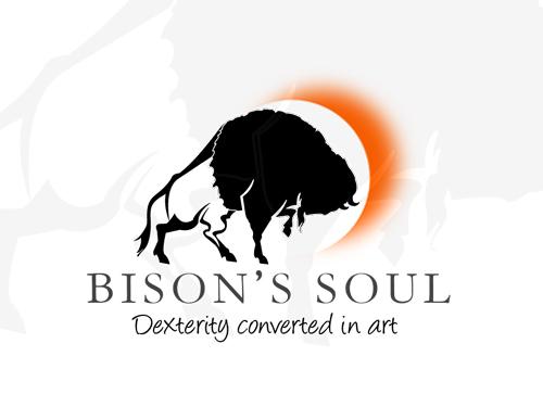 http://www.bisonsoul.com